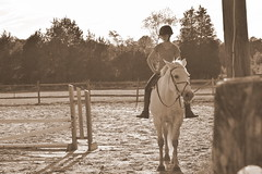 . (liz.kyle) Tags: horse love nature girl outside this friendship picture passion teenager jumper hunter sephia equestrian teamwork