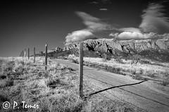 A New Beginning (Sol y Luz Photography (aka love_2_see_the_world)) Tags: blackandwhite bw moon newmexico albuquerque moonrise nm sandiamountains sandias