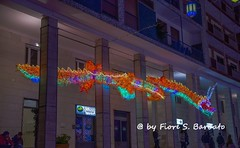 Salerno (SA), 2014, Luci d'Artista. (Fiore S. Barbato) Tags: italy campania luci salerno artista notturno illuminazione notturni