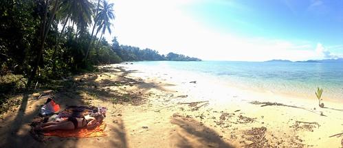 Turtle Beach.