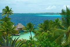 Le Mai Tai Resort (fotofrysk) Tags: polynesia view lagoon resort palmtrees southpacific tahiti borabora overwaterbungalow nikond7100 201411012147 lemaitaiborabora