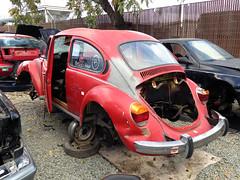 Junkyard: 1973 VW Beetle (3) (Ian E. Abbott) Tags: vw bug volkswagen decay beetle junkyard recycling salvage vwbeetle superbeetle type1 volkswagenbeetle typei vwsuperbeetle wreckyard volkswagensuperbeetle autodismantling