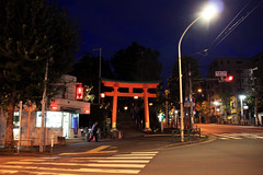 (Yorozuna / ) Tags: road street japan night tokyo shinjuku shrine nightscape crossroad    torii  policebox waseda         anahachimangu    babashitamachi