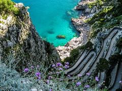 IMG_9217 (Shirshendu Sengupta) Tags: sea italy gardens marina island capri san via 1900 leisure isle augustus piccola giacomo krupp charterhouse tyrrhenian