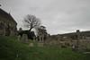 Photo of Grey December, West Lulworth churchyard