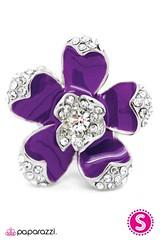 2791_2image2(purple2)--2 (1)