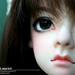 - 16258411492_7d7b81fc71_s