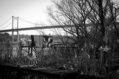 Berge de la Garonne - Bordeaux (Pixel Carré) Tags: bordeaux pont garonne aquitaine bacalan