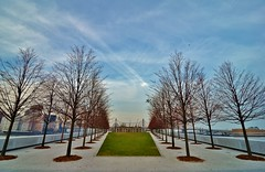 Roosevelt Island, 12.12.15 (gigi_nyc) Tags: nyc newyorkcity eastriver rooseveltisland fourfreedomspark