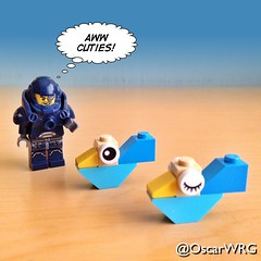 #LEGO_Galaxy_Patrol #LEGO #Cuties #Birds @lego_group @lego @bricksetofficial @bricknetwork @brickcentral (@OscarWRG) Tags: birds lego cuties legogalaxypatrol