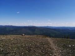 Chena Dome (8) (Alyosha K) Tags: alaska hike