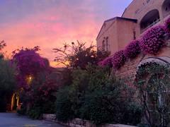 Sunset over Jerusalem's American Colony Hotel (Oren Rosenfeld (oreng)) Tags: sunset hotel israel jerusalem holyland americancolonyhotel amcl orenrosenfeld holylandproductions