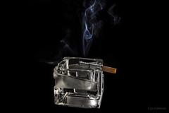 Il fascino del vizio ... (ugo.ciliberto) Tags: cigarette smoke ashtray fumo sigaretta portacenere