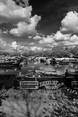 Zulu Warrior - mono (Francis Mansell) Tags: sky cloud london water monochrome river blackwhite outdoor houseboat narrowboat clapton towpath leavalley riverlea springfieldmarina springfieldpark zuluwarrior