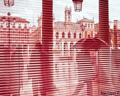 Plaza Mayor (Iban Lopez (pepito.grillo)) Tags: reflection valladolid reflejo plazamayor ayuntamiento d90 ibanlopez