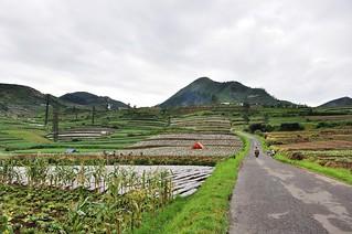 dieng plateau - java - indonesie 29