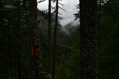 Kettle Valley Railway (Kristian Francke) Tags: old trestle bridge red orange cloud canada mountains color green abandoned nature wet rain fog rural forest wow landscape hope dangerous rust bc mud natural pentax decay columbia hike trail valley british yale exploration tamron k50