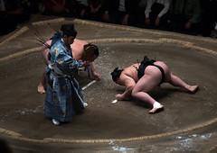 Two sumo wrestlers fighting at the ryogoku kokugikan arena, Kanto region, Tokyo, Japan (Eric Lafforgue) Tags: people male men sport japan horizontal asian japanese tokyo big fight referee asia fighter power martial wrestling fat traditional champion culture traditions lifestyle competition clash ring east indoors tournament ritual leisure sumo inside strength fullframe athlete adults wrestlers adultsonly cultural obese overweight ryogoku 3people competitors kantoregion threepeople colourpicture 2029years japan161107