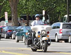NPW '16 Sunday -- 6 (Bullneck) Tags: spring americana nationalpoliceweek cops police heroes macho toughguy federalcity washingtondc uniform biglug bullgoons nationalmall motorcops motorcyclecops motorcyclepolice boots breeches motorcycle harley uspp usparkpolice