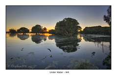 Under Water (JChipchase) Tags: trees water sunrise reflections nikon australia d750 forrestfield