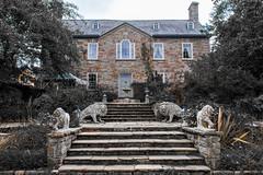 Walton Court (ToDoe) Tags: ireland statue stairs cork lion irland treppe lions lwe treppen lwen aufgang oysterhavenbay steinlwe