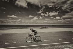 Lars van der Haar (Adrianusz) Tags: adrianus adrianusz arjan adrianuz arjanvandenoudenrijn brouwersdam goeree overflakkee nk wielrennen giant giantalpecin lars van der haar oudenrijn 2016 nk2106 zeeland