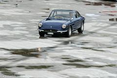 Ferrari 330 GTC (aguswiss1) Tags: ferrari330gtcdolderclassiczrichswissswitzerland ferrari 330 gtc classiche sportscar supercar italencar rare million cruiser racer racecar blue carshow carandcoffe carcoffe dolder switzerland italeincar italien