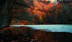 Fall & Dreamy days-Turkey (oztas) Tags: oztas fall yedigller