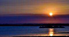 Calma (ZAP.M) Tags: naturaleza nature sunset parquenatural marismas carboneros chiclana cdiz andaluca espaa nikon nikond5300 flickr zapm mpazdelcerro