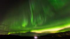 Aurora borealis (JH') Tags: nikon nikond5300 nature northernlights d5300 sky sigma sweden stars heaven fall auroraborealis aurora autumn field trees tree longexposure exposure landscape clouds borealis