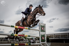 2466 ([]NEEL[]) Tags: horse concours hippique kharkiv ukraine white stable whitestable