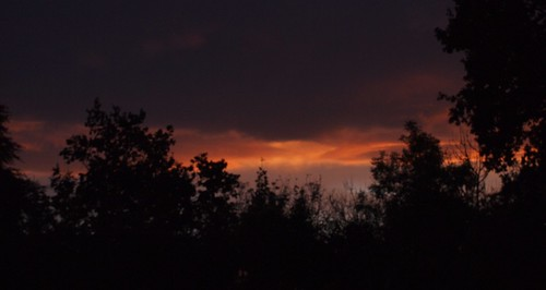 Abendsonne 08