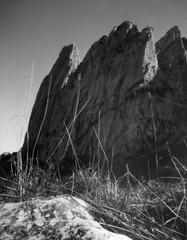 Bockmattli (Large Formate Pinhole) (sogesehen.) Tags: blackandwhite bw mountain alps film nature landscape iso100 schweiz switzerland suisse homemade 4x5 pinholecamera largeformat pinholephotography fomapan bockmattli kantonschwyz