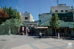 from Khenifra to Ifrane (andrea.prave) Tags: morocco maroc marocco atlante  almamlaka   visitmorocco almaghribiyya tourdelmarocco