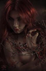 Ces Grapes de ma vigne (M.D Art) Tags: red portrait art girl beauty look hair nude hands artistic vine piercing redhead grapes glance hold alternative aweosme