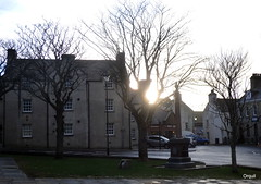 Part Of Central Kirkwall In January (orquil) Tags: old uk trees winter buildings islands scotland town orkney centre traditional january leafless kirkwall victoriastreet palaceroad kirkgreen