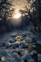SnowGlow (jibbajambs) Tags: sunset white snow cold reflection forest river dark austria dornbirn rocks warm glow moody mystic snowballs rland 500px ifttt rlandphotography