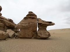 Woestijnen en meren - dag 2 en 3-54