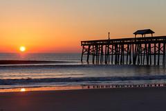 IMG_0903 (delon_anno) Tags: ocean bird beach nature sunrise canon pier sand waves florida dune fernandinabeach t5i