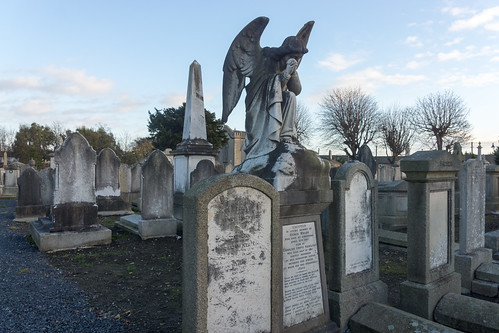 Mount Jerome Cemetery & Crematorium is situated in Harold's Cross Ref-100413