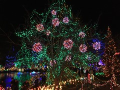 Van Dusen Gardens Festival of Lights
