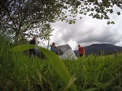 Pitching a tent near Fox Glacier