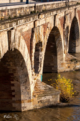 Pont Neuf (Fabien Ribet) Tags: toulouse garonne pontneuf berges