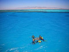 Let's snorkel Ras Mohammed National Park (leewoods106) Tags: ocean trip travel blue sea vacation people orange mountain holiday mountains colour nature wet water beautiful yellow coral swimming swim landscape person photography landscapes photo nationalpark holidays asia colours snorkel desert photos turquoise redsea group indianocean egypt snorkeling swimmer persons traveling lifejacket sinai groups coralreef traveler egyptians beautifulplaces rasmohammed turquoisewaters rasmohammednationalpark mustseeplaces