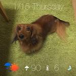 おはフォルテ(^-^)/ 1月15日(木) 愛知県名古屋市北区 雨後晴 6ºC 90% #そら案内 http://sora-annai.jp/ios #fp_forte #朝1フォルテ thumbnail