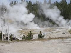 Yellowstone National Park, Wyoming (yellowroseoftexasmindy) Tags: trees landscapes scenery parks yellowstone wyoming nationalparks hotsprings geysers basins