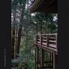 奥の院 舞台 (Eiji Murakami) Tags: leica summer japan sony summicron 日本 夏 nara 奈良 leitz 室生寺 α7r2 alpha7r2