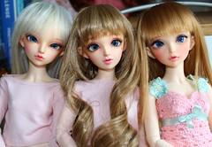 Bora, Gamble, Tewin (Gigiholy) Tags: licht moe wigs fairyland mnf frezje minifee nf14 rheia rosenlied formydoll viridianhouse nomyens oscardolleyes nanuri16