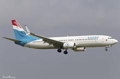 Luxair 737-800 LX-LBA (birrlad) Tags: ireland dublin airplane faro airport aircraft aviation airplanes landing international finals airline boeing arrival split airways approach airlines runway dub airliner 737 scimitar arriving luxair b737 737800 b738 7378c9 lxlba lg2284