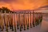 D I R E C T E D (migo_santos) Tags: blue sunset sea seascape beach canon landscape sand rocks bamboo hour boracay ultrawide hue hdr uwa seascap 760d
